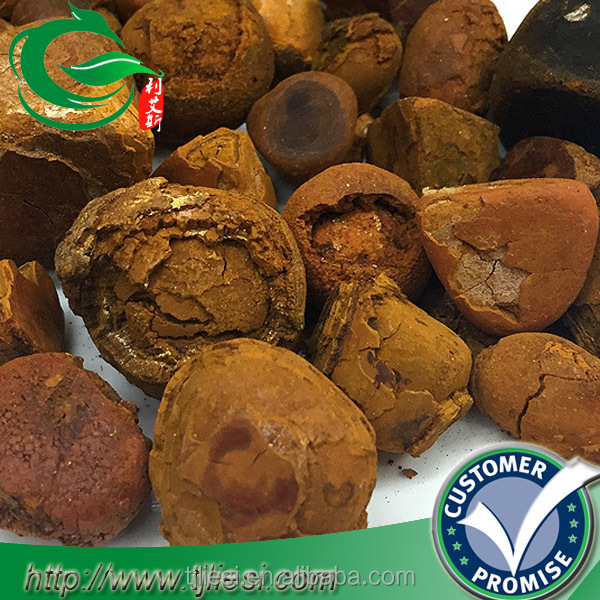 supply cow bezoar ox gallstones with low price
