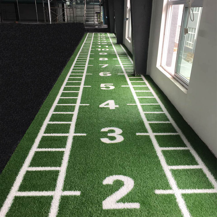 Artificial Grass For Gym Training Turf Buy
