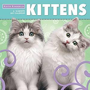 Keith Kimberlin Kittens Calendar 2017 -- Deluxe Kitten Wall Calendar (12x12)