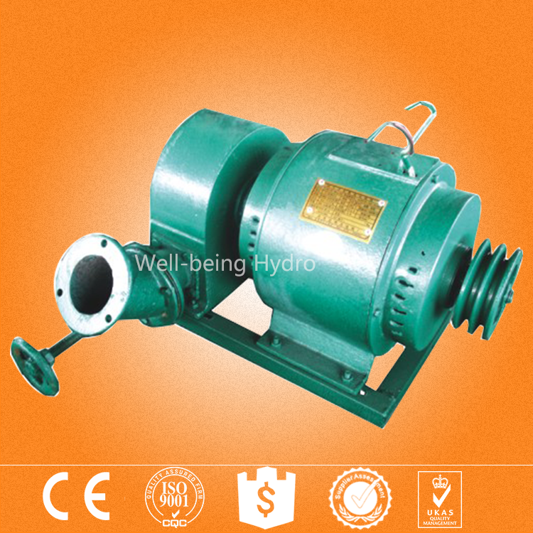 Free energy power plant 10KW synchronous water wheel hydro pelton generator