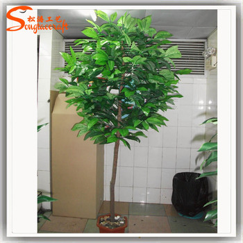 ST CO11 Home Decor Tree Artificial Cocoa Trees Plastic Pods Real Wood Plant