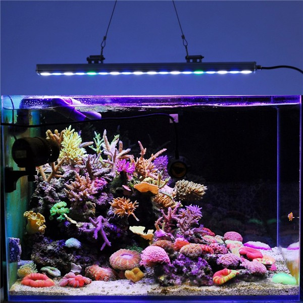 Chinese Led Aquarium Light Chinese Led Aquarium Light Suppliers and Manufacturers at Alibaba.com : led reef tank lighting - azcodes.com