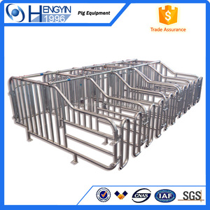pig farm breeding equipements sow gestation stall