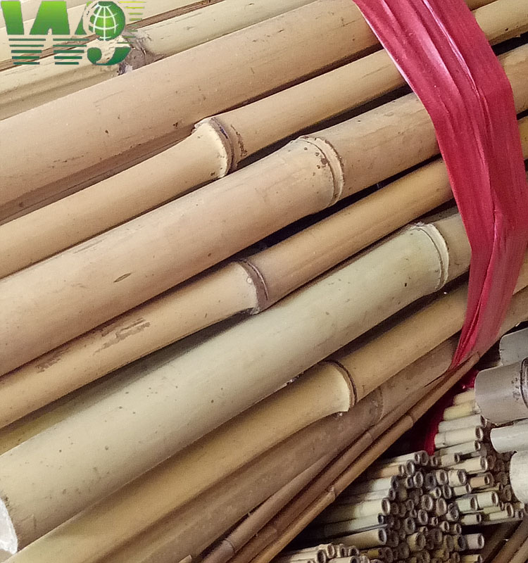 WY-081 2017 eco-friendly construction materials Natural bamboo poles