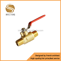 brass angle globe valve with low price
