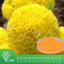 100% pure nature marigold extract Lutein 10%