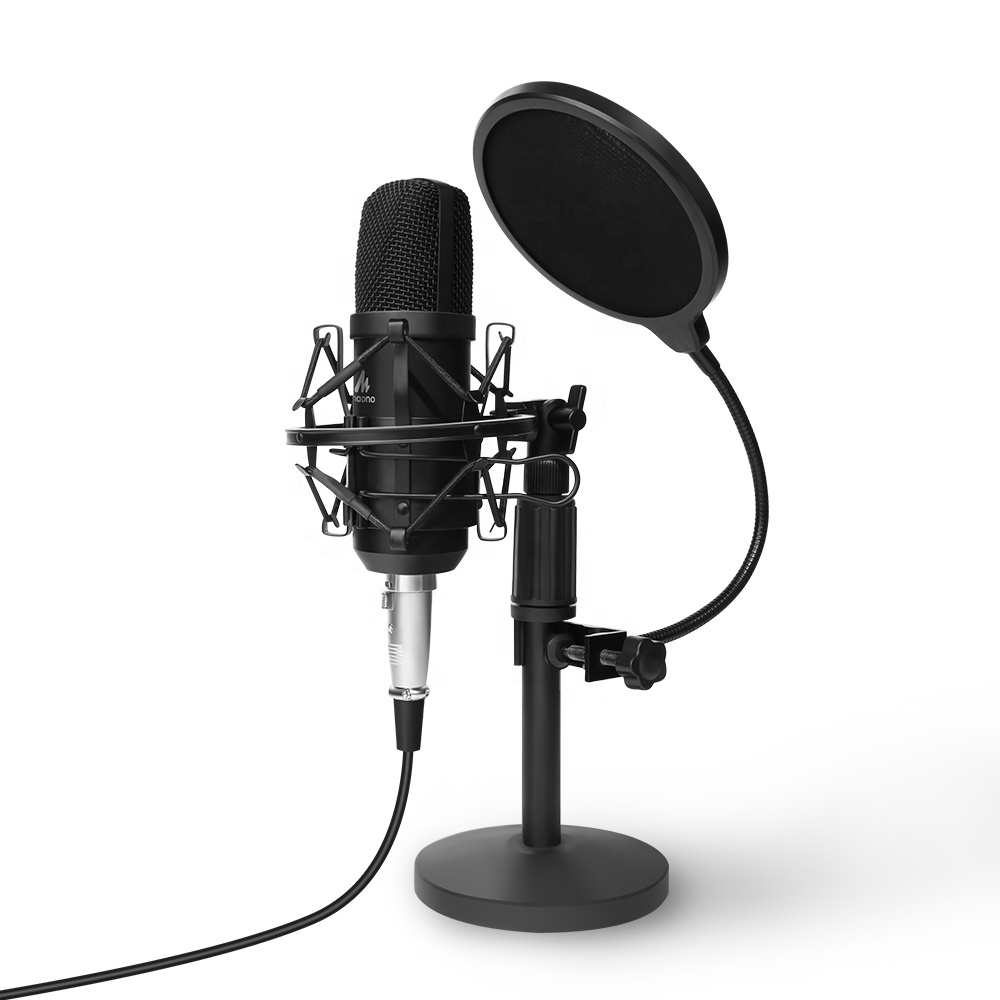 Professional Metal condenser studio microphone with microphone stand