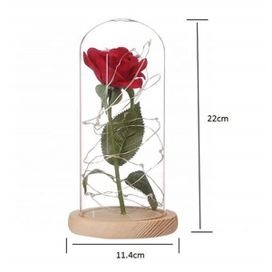 Tinderala long stem rose in glass bulb globe tube with love rose