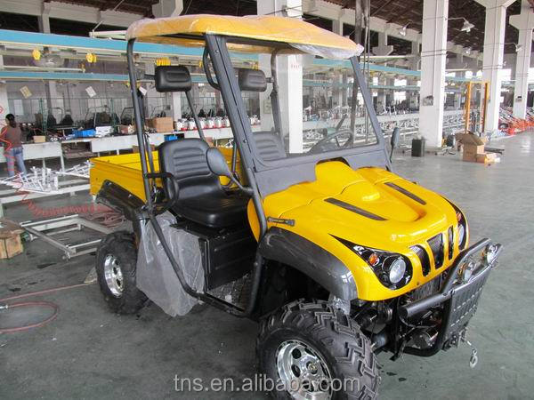 TNS hot selling and fashionable design all terrain utility vehicles