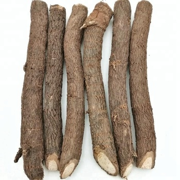 Intercropping And Cold Resistant Hybrid Paulownia Root