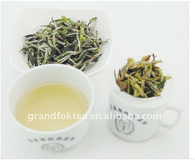 EU standard fresh natural first grade White Peony tea Fujian White tea per kg price - 4uTea   4uTea.com