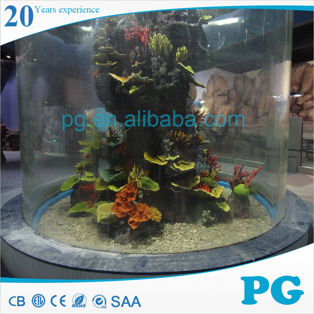 Freshwater aquarium fish exporters - Alibaba Manufacturer Directory Suppliers Manufacturers Exporters Importers