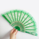 new year plastic hand Fan- Plain Color Wedding fan
