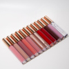 /product-detail/2020-new-launch-private-label-make-up-lip-gloss-glossy-24-colors-oem-lip-gloss-no-moq-62181796843.html