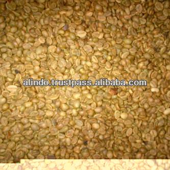 Java Robusta Raw Coffee Beans Grade Ek1 Elb (extra Large Beans ...