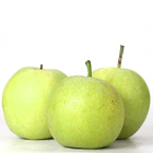 Fresh Asian Pear Ya Pear Type with Wholesales Price