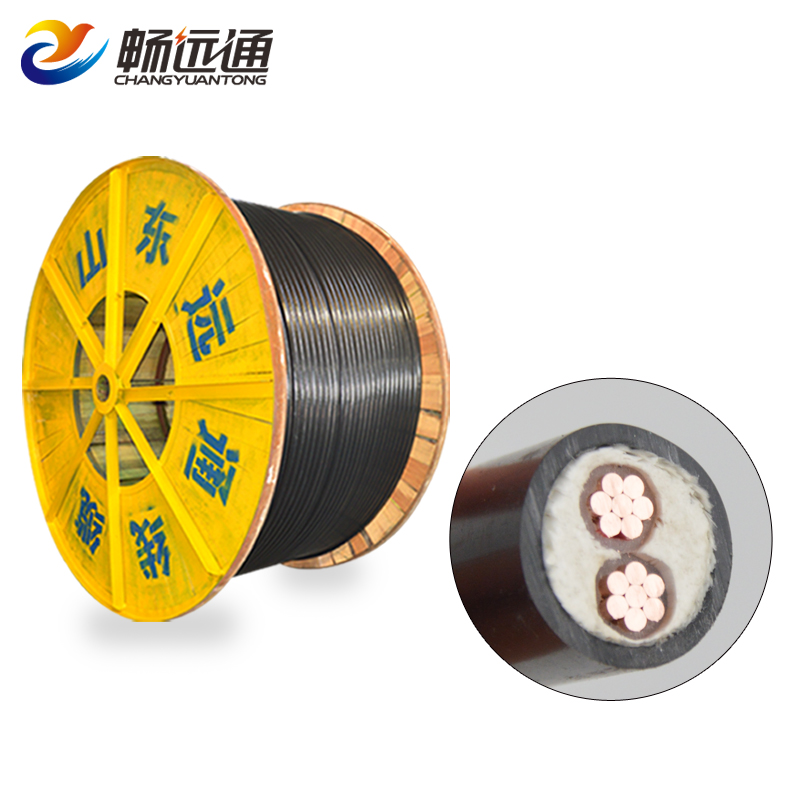 XLPE insulation 2 cores 16mm fire resistant copper condutor power cable