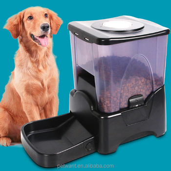pet dog cat automatic feeder water container timer food dispenser