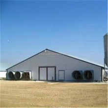 light frame steel structure poultry farm shed design prefabricated industrial chicken house