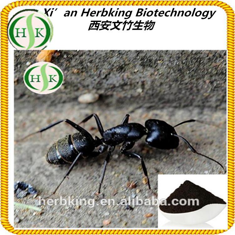 black ant sex pills busty gf blowjob
