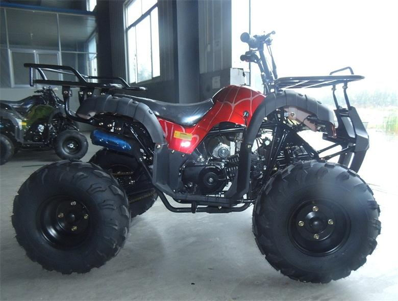 125cc kids atv dune buggy for sale with eec