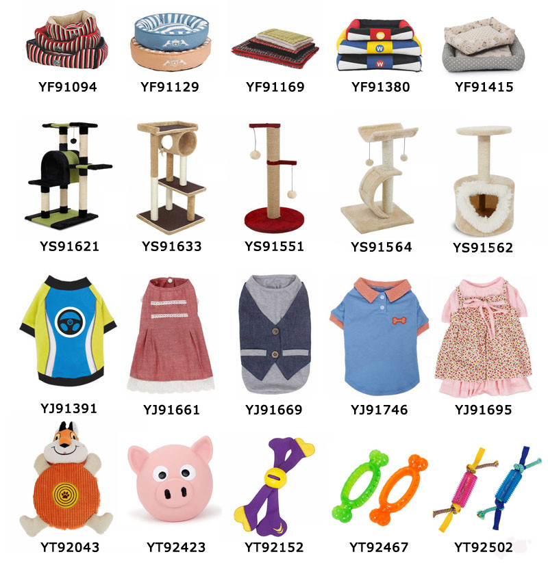 Lovely and charming pet clothes