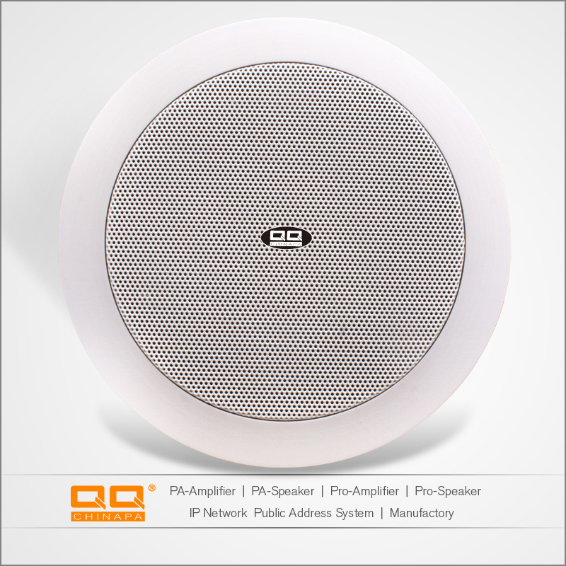 Made in China Speakers Subwoofer