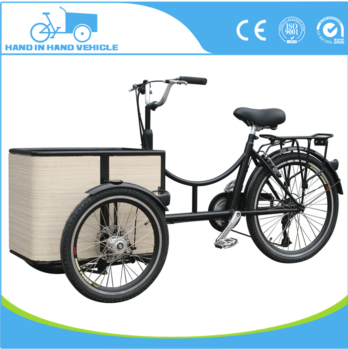 new design small cargo 250w reverse trike