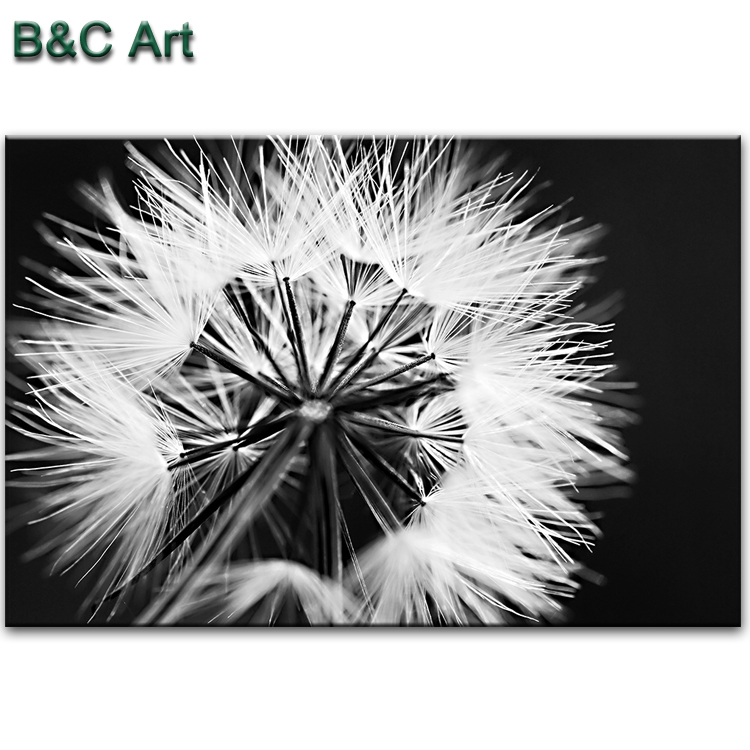 Simple single dandelion flower painting with white and black color