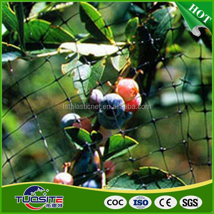 Top quality latest design electronic battery powered anti bird net