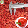 iqf frozen red bell pepper diced fresh capsicum