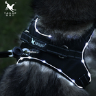 2019 New Arrival LED Rechargeable Flashing Reflective Dog Harness Vest