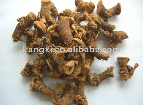 Lesser Galangal Root Extract-10:1-treating cold induced disease
