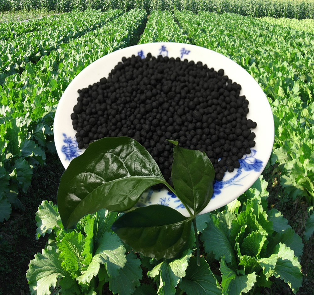 NPK organic fertilizer granular prices for vegetables