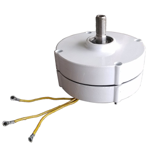 Factory direct 100W small permanent magnet wind generator 12 / 24V