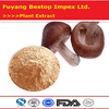 Xiang Gu Factory Provided Organic Shiitake Mushroom Extract