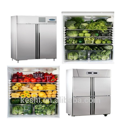 New Style Commercial Refrigerator Kitchen Freezer