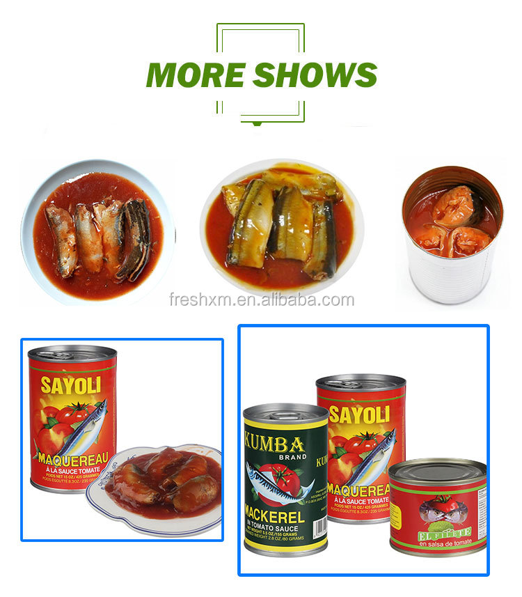 Wholesale Canned Mackerel tin fish in tomato sacue 425g