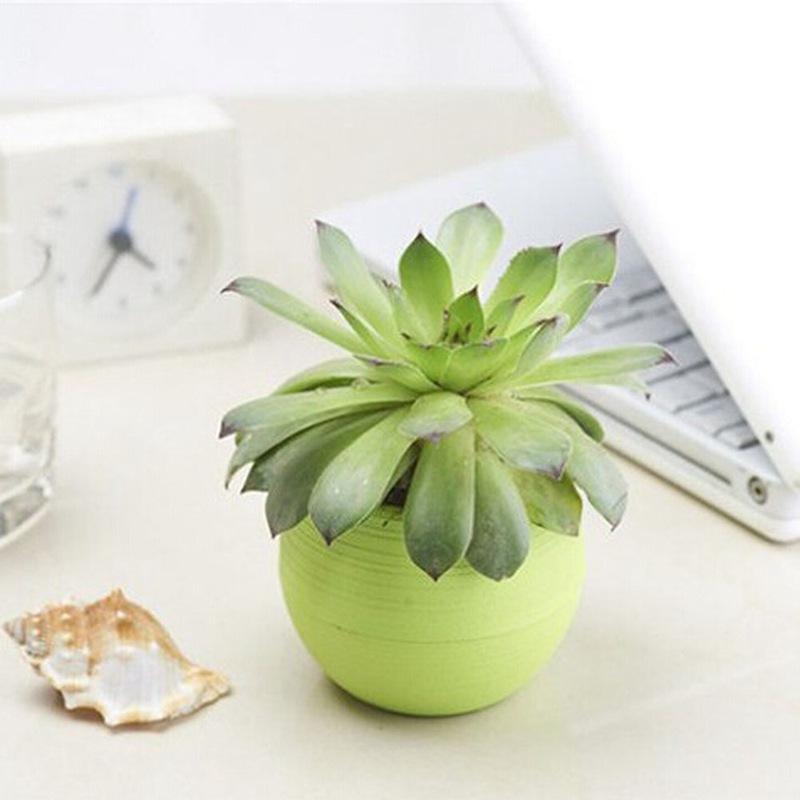 mini pots de fleurs en plastique promotion achetez des mini pots de fleurs en plastique. Black Bedroom Furniture Sets. Home Design Ideas