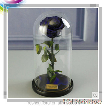 Wholesale Fresh Preserved Flower Black Rose In Glass DIY Decoration Roses For Mothers Day