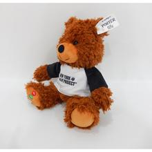 OEM <span class=keywords><strong>Teddy</strong></span> Bear Brown Giocattoli di Peluche Colorato Orso