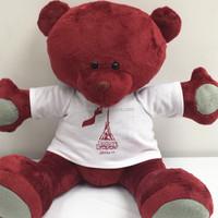 High quality red plush teddy bear dolls with T-shirt