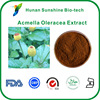 Acmella Oleracea Extract 4:1 Treatment of Bacterial and Fungal Skin Disease