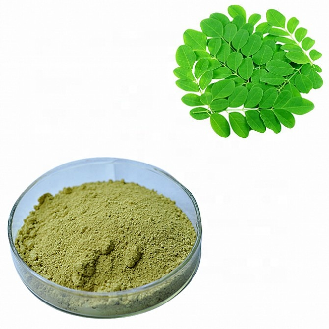 In stock pure moringa leaf extract powder for slimming