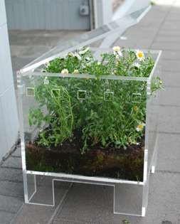 Marvelous Acrylic Kitchen Nano Garden Planter Sit