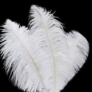 synthetic south africa cheap ostrich feather