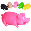 Sound rubber pig dog toys colorful e-friend dog chew toy