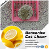 High Quality Pet Products Coarse Kitty Litter Scoop