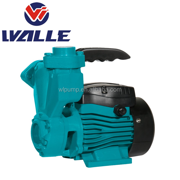 220V Electric Clean Water Machine Powerful High Pressure Domestic Use Pump