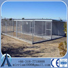 Baochuan China - 5'x10'x6' big dog house clamp connector dog runs solid roof dog kennels